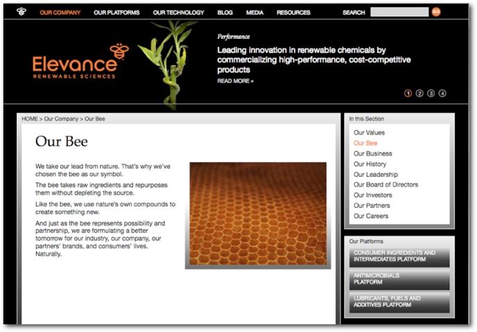 elevance web